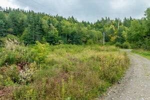 8 Acres For Sale off Martins Lane (Georgetown Rd) #REMAX