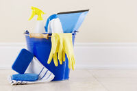 Experienced Cleaner Available 45/ Hour (Ottawa and Gatineau )