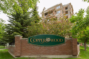 1033ft2 Copperwood Condo in Spruce Cliff