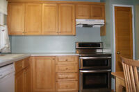 oak kitchen cabinets and pantry door for sale