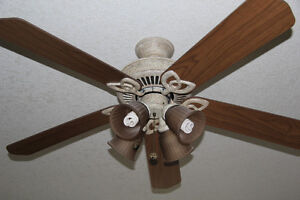 QUALITY CEILING FAN - WITH LIGHTING Kitchener / Waterloo Kitchener Area image 1
