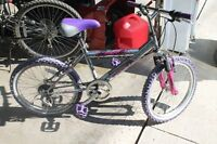 "Girl's 16"" Mountain Bike. Great Condition!"
