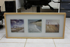 Nature Themed Framed Photograph