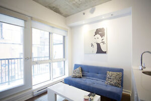Fully furnished student rental September - May mcgill ghetto