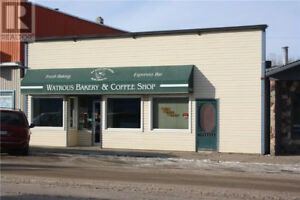 NEW LISTING!!! Commercial Opportunity! 305 Main St, Watrous