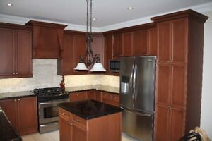 Used Kitchen Cabinets and Counter (Canac)
