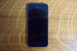 iPhone 5s - 16GB - used - unlocked
