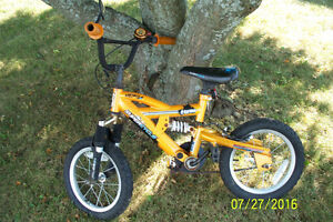 Little Boys Supercycle Bicycle