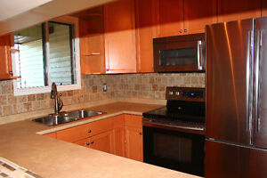 A must see 1 bedroom fully renovated condo for rent downtown