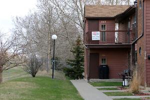 222 Cedar Meadows Drive - Lakewood - Great View!