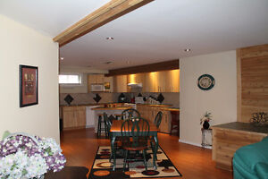 Upscale Fully Furnished Basement Suite