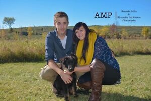 AMP - Photography  Kitchener / Waterloo Kitchener Area image 8