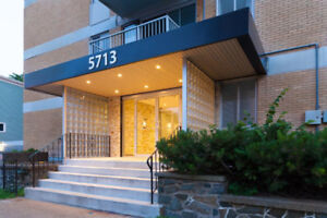 DOG FRIENDLY LG BRIGHT 2 BR APT w/ BALCONY STEPS FROM SMU, IWK