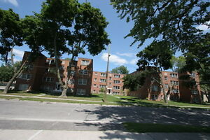 Old South Charm 1 Bed w/Hardwood Floors & Controlled Entry London Ontario image 8