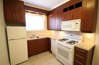 LARGE RENOVATED 3 1/2 ● COTE-DES-NEIGES ● 5 MINUTE WALK TO M