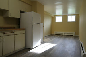 Thompson & Chesterfield 2 Bedroom w/ New Plank Floors