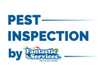 Pest Control Services | Book Pest Inspection in London - for ONLY £35!