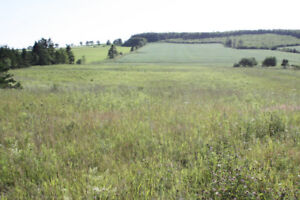 One Acre Lots for sale on Prince Edward Island, central located