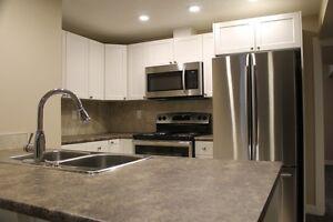 2 Bedroom + 1 Den Basement Suite - Fully Renovated in Westend