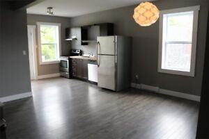 All incl. Newly renovated 3 BR downtown hospital university