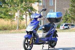 Daymak chameleon 84 Volt escooter marked down new condition