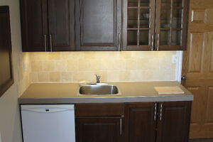 1 Bedroom Furnished Short Term 1-6 months inclusive feb 1st