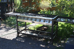 Camp Chef 8 burner party grill