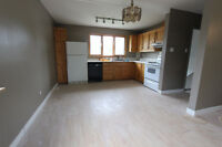 Bunglow house at west Edmonton with garag(Parkview 146st 93 Ave)