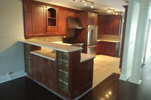 Kitchen Cabinets Set ONLYn- All Wood Doors, 24 Pieces.
