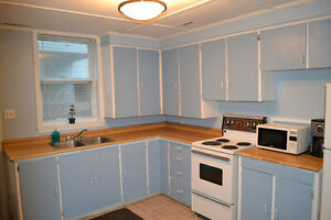 Bright 2 Bedroom Flat with Shared Backyard - Pets Welcome!