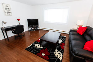 Beautiful Fully furnished One bedroom Suite for Rent!!