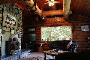 Log House - totally set up for Horses - Price reduced