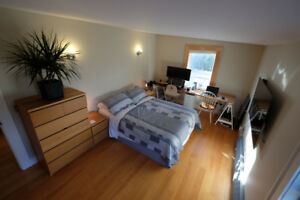 Fantastic furnished room in the heart of the North End! Dec-Feb