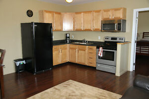 New & Furnished 1 bedroom apartment for rent in Estevan area