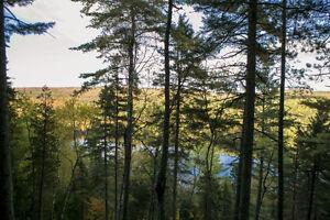 20% de rabais sur tous les terrains En Montagne, Lac Jackson