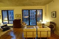 Furnished condo with gym & swimming pool   Griffintown