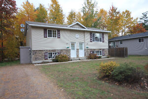Newer 2 bed, 1 bath duplex minutes to Petawawa Point