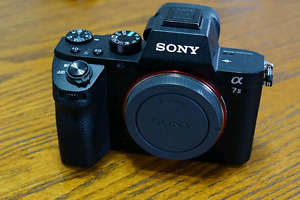SONY A7m2, can trade lenses