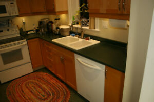 Kitchen cabinets, counter top with sink and faucet.