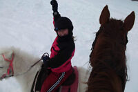 PONY RIDES AND PONY PARTIES-AT YOUR HOME OR AT THE BARN