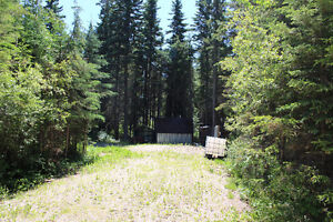 Open Lot with Sheds at Turtle Lake-KIV/MLB!