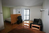 SEMI-FURNISHED DOWNTOWN MONTREAL CONDO FOR RENT