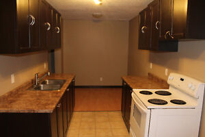 Beautifully Renovated 3 Bedrooms Town House in Millwoods