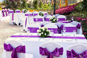 Party Decor Rentchair  Table Clothchair Cover Rentals