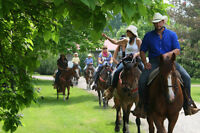 Horseback Riding - All Year Long!