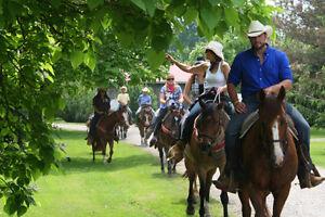 Horseback Riding - All Year Long! London Ontario image 1