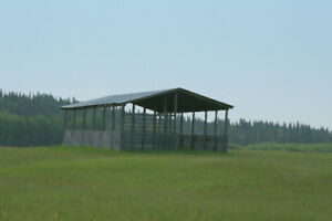 Standing hay for sale near Edson