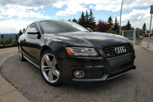 Audi S5, fresh oil change, check up and ready to go