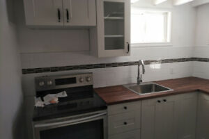 1 Bedroom Basement Apartment Unit  Short or Long Term