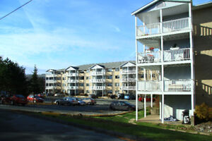 Beautiful 2 Bedroom 2 Level unit available Clayton Park July 1st
